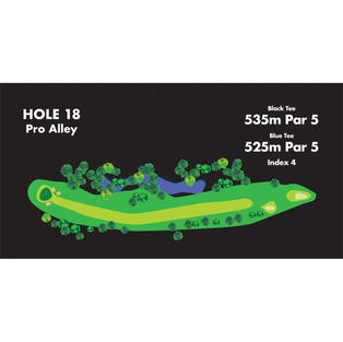 HOLE 18 Pro Alley