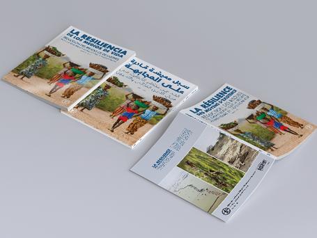 Relilient Livelihoods (2013)