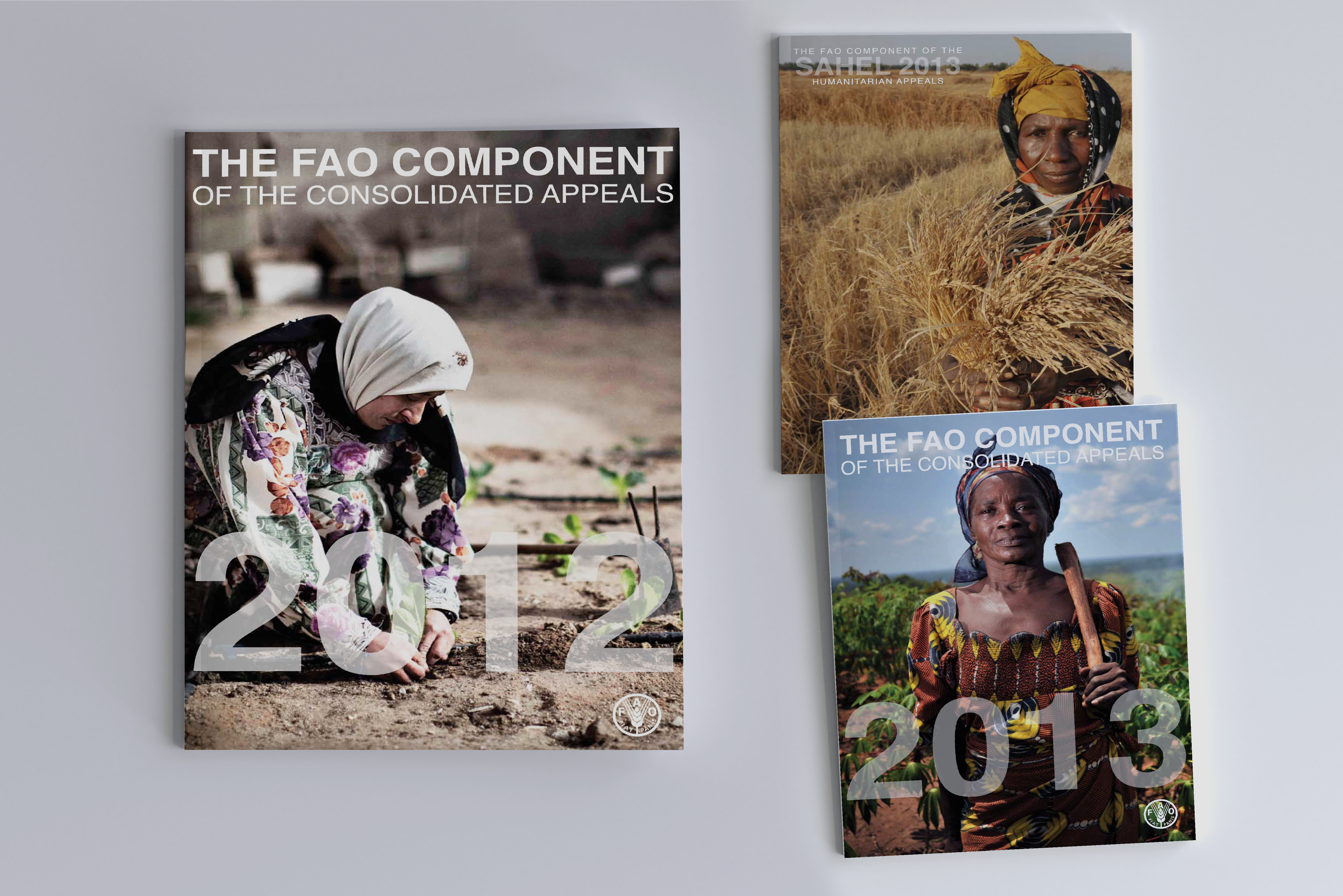 The FAO Components