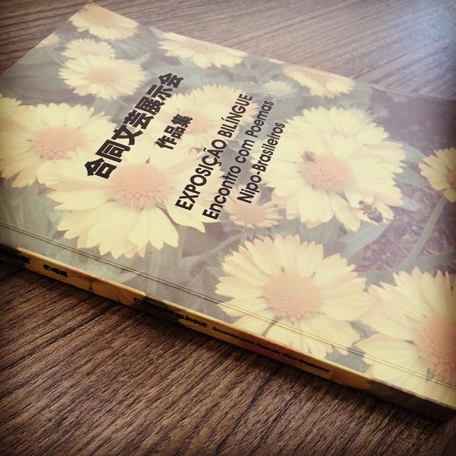 Diagramação e Publicação de livro