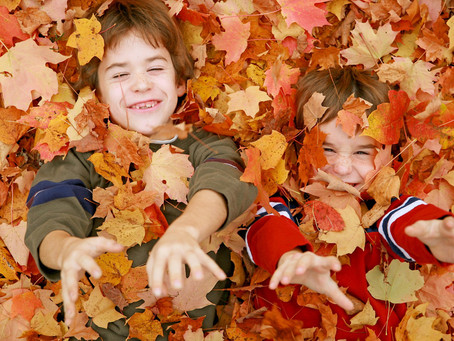 How to Prepare your Maryland Home for Fall