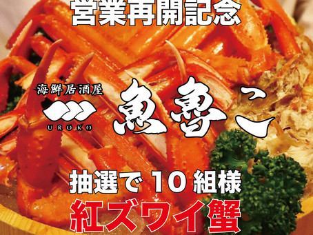 海鮮居酒屋『魚魯こ』の営業を再開します!!