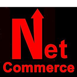 LOGO net comerce  google play.png