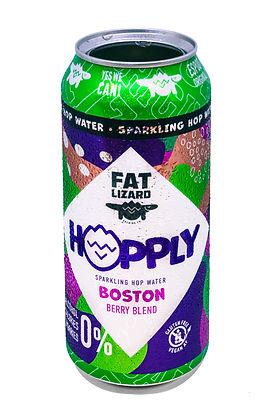 HOPPLY_Boston_PRINT.jpg