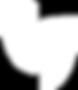 ZEST Logo Masks White.png
