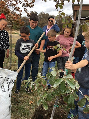 NOV 6 2019 4th Graders planting tree.[19