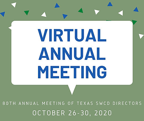 VIRTUAL ANNUAL MTG GRAPHIC OCT 26-30 202