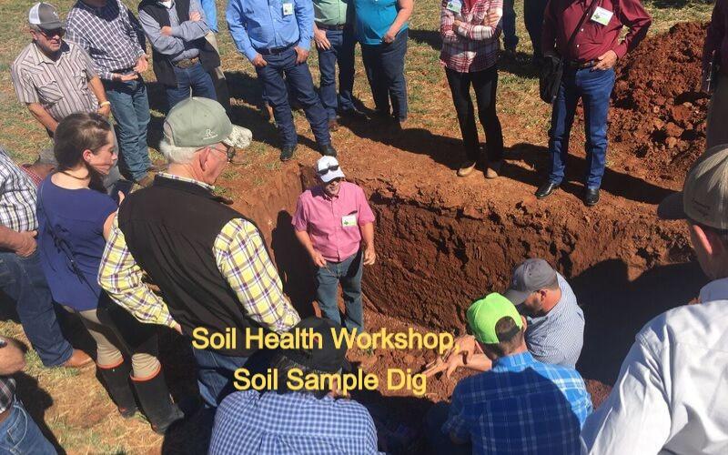 CLOSEUP OF GROUP AROUND SOIL SAMPLE DIG