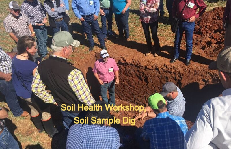 CLOSEUP OF GROUP AROUND SOIL SAMPLE DIG