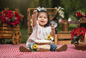 Smash Cake3