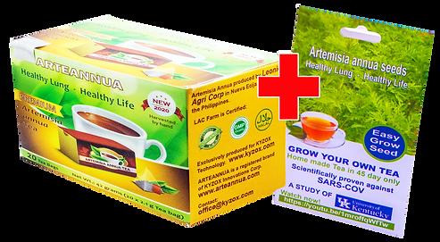 tea plus seed last.png