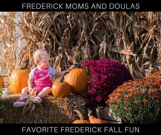 Friday Favorites: Halloween & Fall Fun