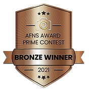 BRONZE-BADGE-V4-2.png