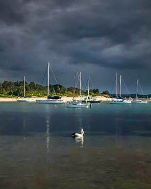 pano_yachts_pelican.jpg