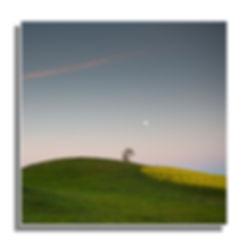 Square format images