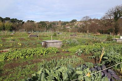 Jardin - Bilbao -Crédits Agrovélocités.j