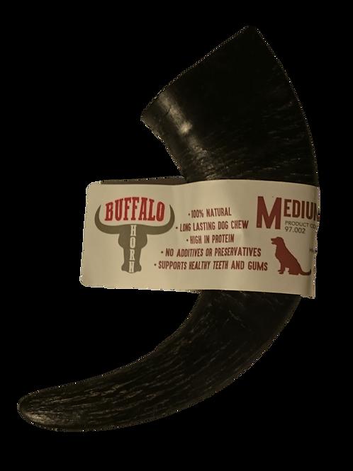 Buffalo Horn - Medium