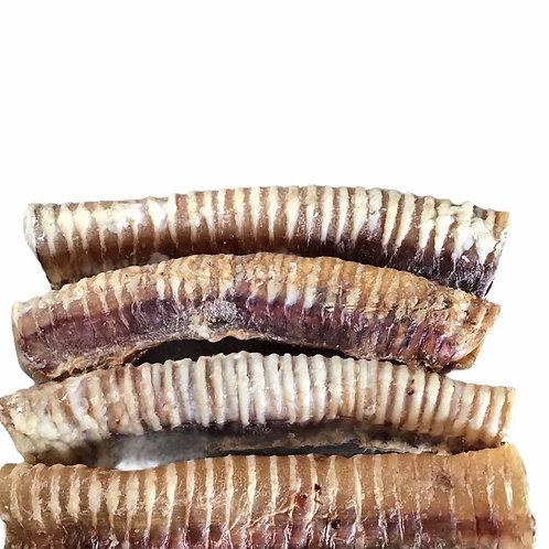 Beef Trachea 10/12 inch  X 4