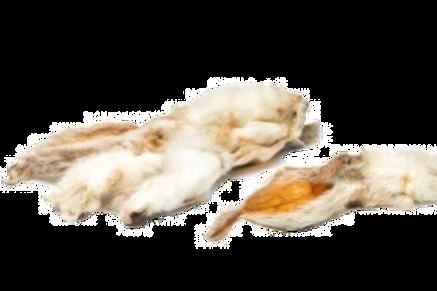 Hairy Rabbit Ears X 5