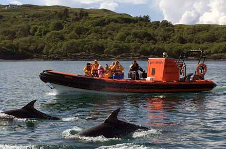Seafari Adventures near Oban