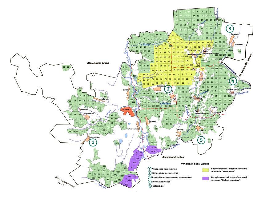 Карта ООПТ Чечерского района в ворд.jpg