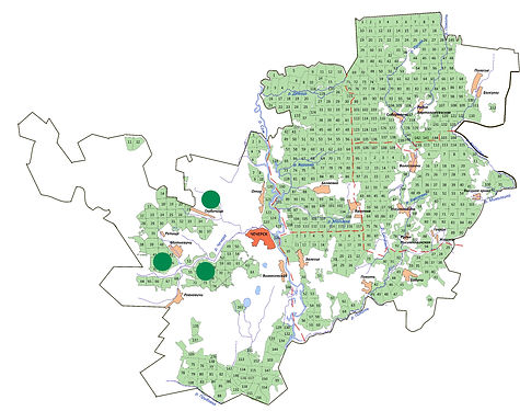 мини-карта раст дрок германский.jpg