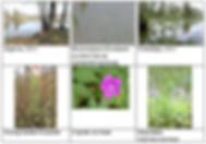На сайт Приложение 3 13.jpg