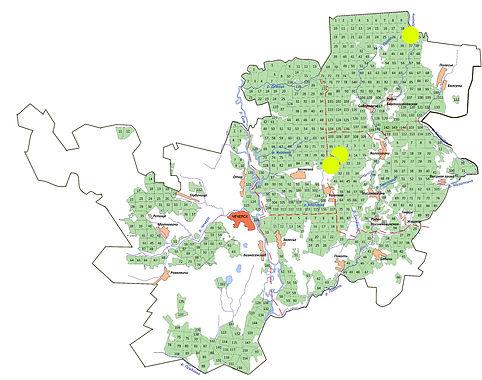 мини-карта серый журавль.jpg