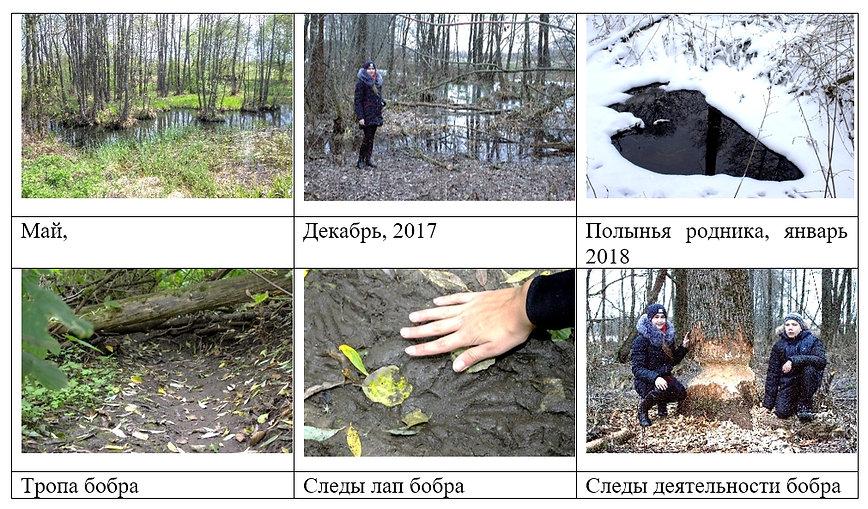 Приложение 2 река Мутнянка.jpg