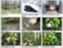 На сайт Приложение 3 1.jpg