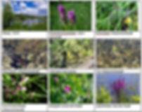На сайт Приложение 3 3.jpg
