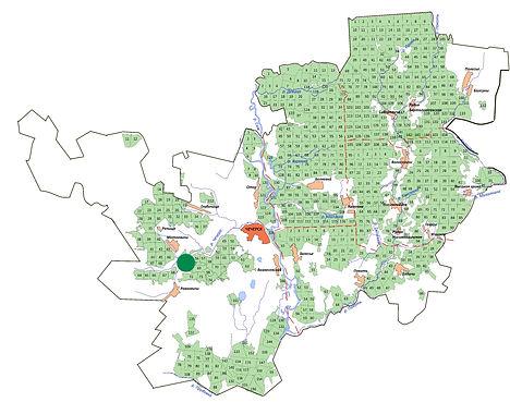 мини-карта раст касатик сибирский.jpg