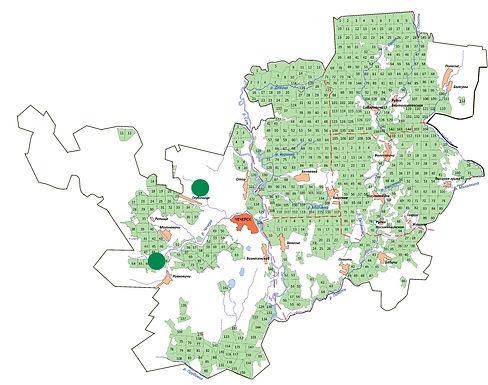 мини-карта раст лилия кудреватая.jpg