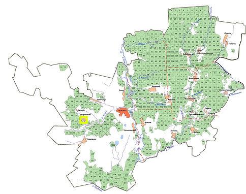 мини карта белая лазоревка.jpg