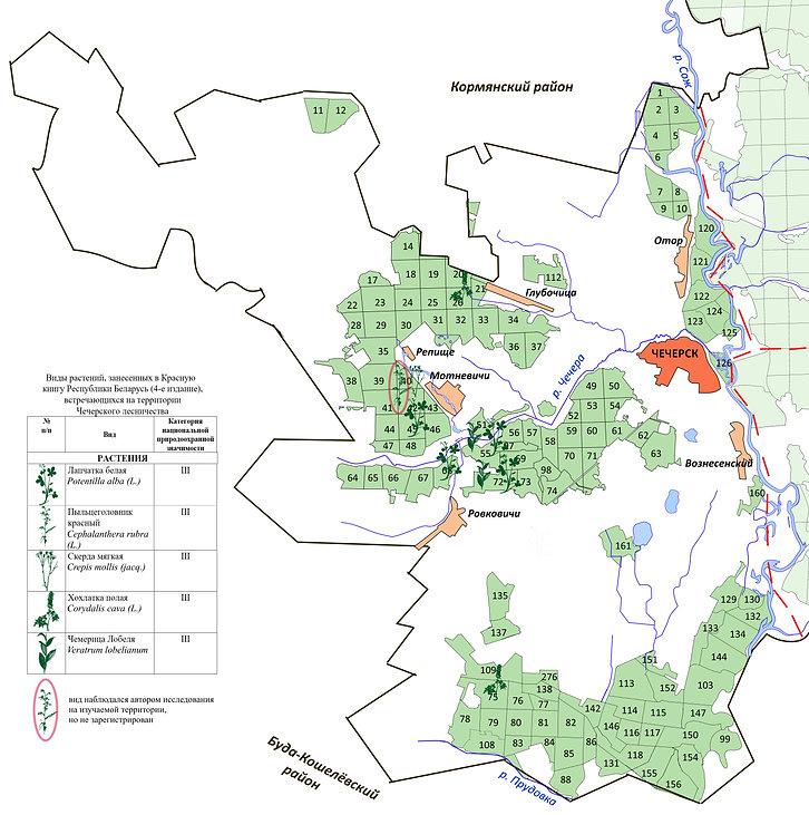На сайт приложение 4 Карта Чечерское лес