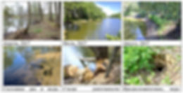 Приложение 2 Дубок.jpg