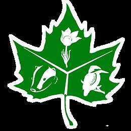 Логотип первая версия пнг.png