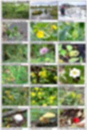 На сайт Приложение 3 11.jpg