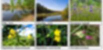 На сайт Приложение 3 5.jpg
