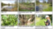 На сайт Приложение 3 9.jpg