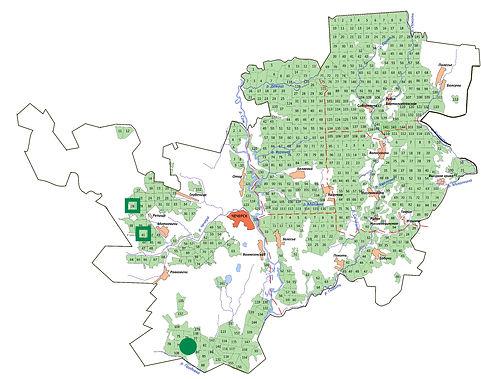 мини-карта раст любка зеленоцветковая.jp