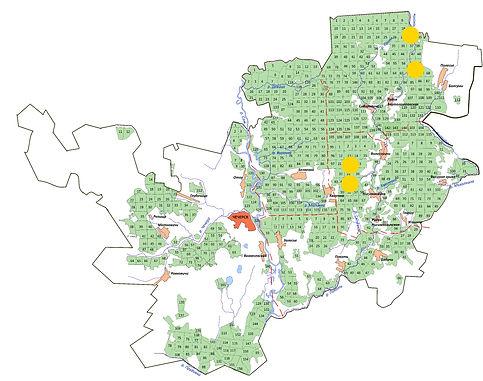 мини-карта раст мхи и иже с ними фомитоп