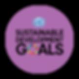 SDG iconv2.png