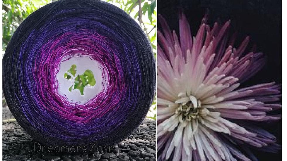White purple dahlia