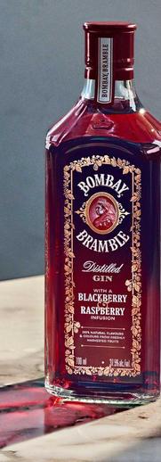bombay-gin_edited.jpg