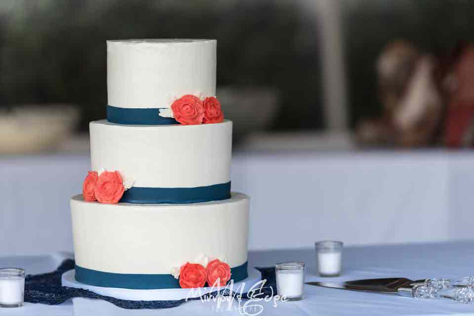 Beach side wedding cake