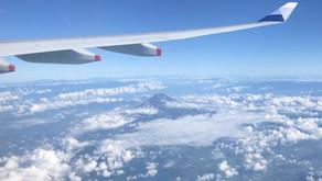 China Airlines # Flight Review • CI223 | HND-TSA | A330 • Economy Class