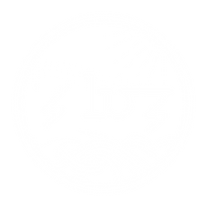 ZLUZ logo with B&W options final-02.png