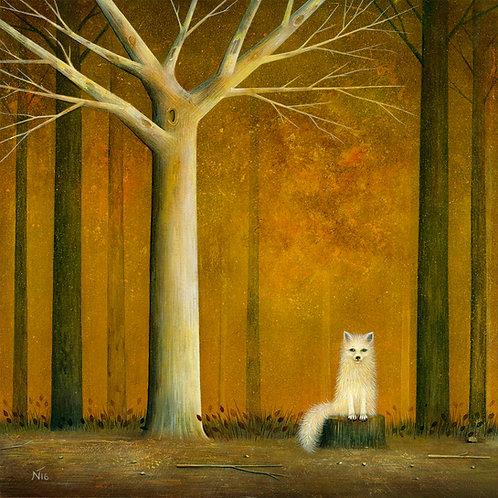 'White Fox' Giclée Print