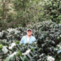 Finca Los Plantes, Sergio Ticas, Finca en Chalatenango, Cafe de Chalate, Best Coffees in El Salvador
